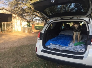 Subaru camping in TX